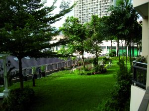 Bildmotiv Bangkok Garten