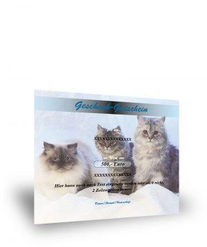 Geschenkgutschein mit Katzenmotiv II