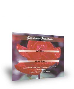Geschenkgutschein mit Rosenmotiv II