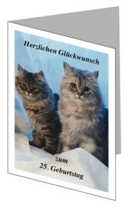 glueckwunschkarte mit Katzen