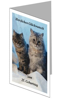 Glückwunschkarte mit Katzen lang